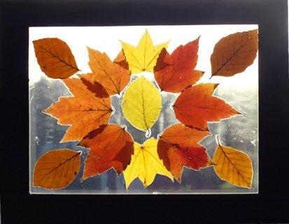 Laminated-Leaf-Art