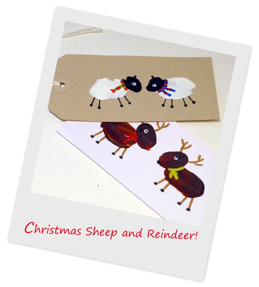 sheep-and-reindeer