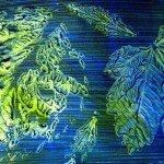 leaf-frottage