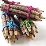 Twig Pencil Crayons